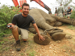David with a 6.5 tonne elephant being relocated