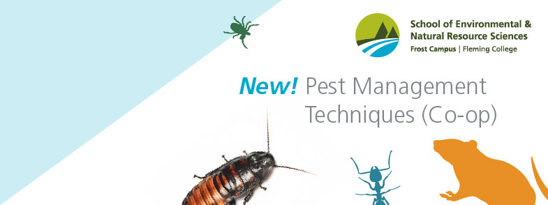 New! Pest Management Techniques <span style='white-space:nowrap'>(Co-op)</span>