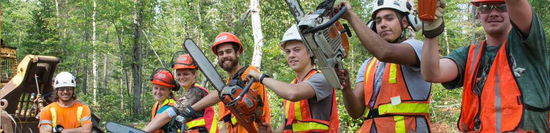 Forestry colloge courses