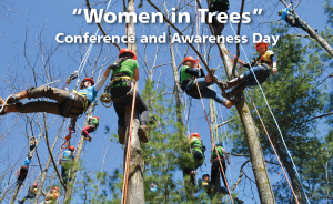 women-in-trees-cropped