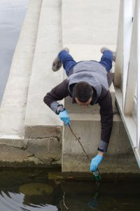 18-10-26-shoreline-cleanup-2